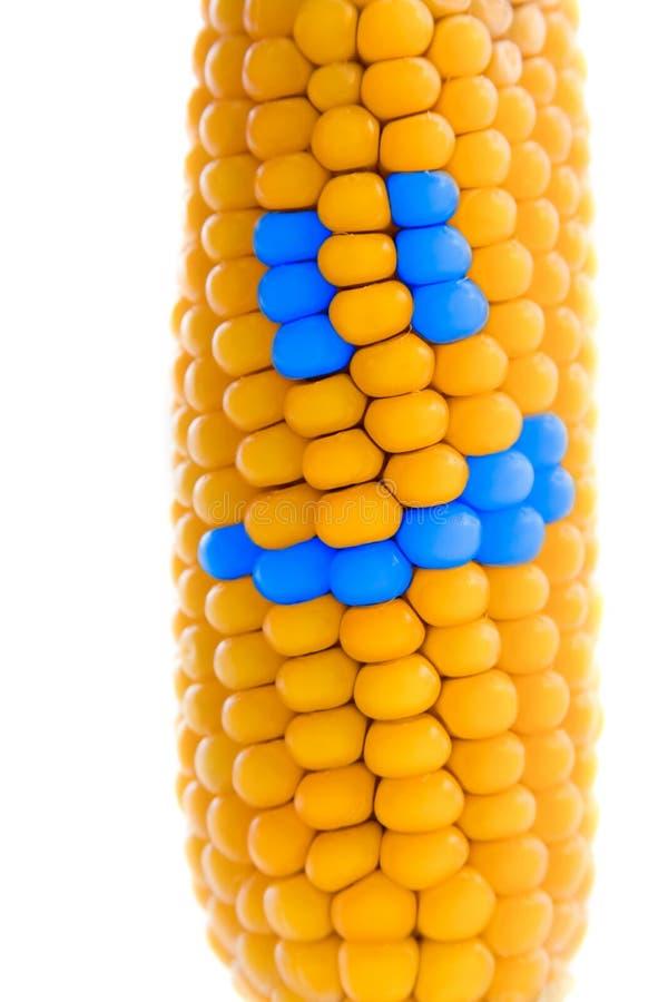 kukurudza szczęśliwa obraz stock