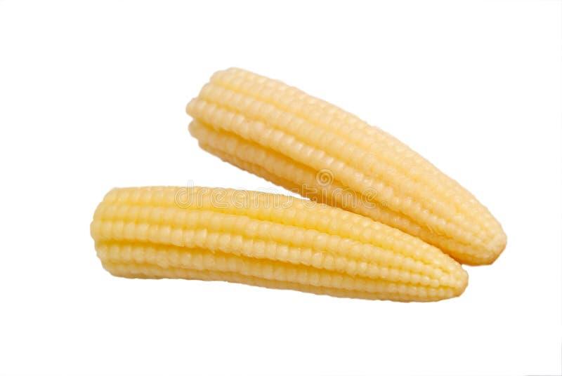 kukurydza marinaded obrazy stock
