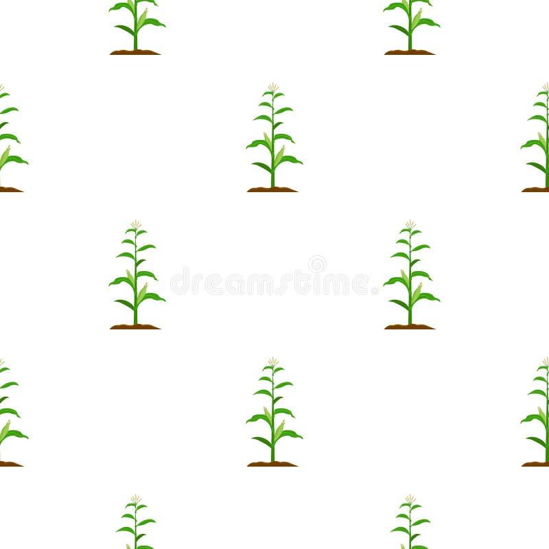 Kukurydzana ikony kreskówka Pojedyncza rośliny ikona od dużego gospodarstwa rolnego, ogród, rolnictwo kreskówka royalty ilustracja