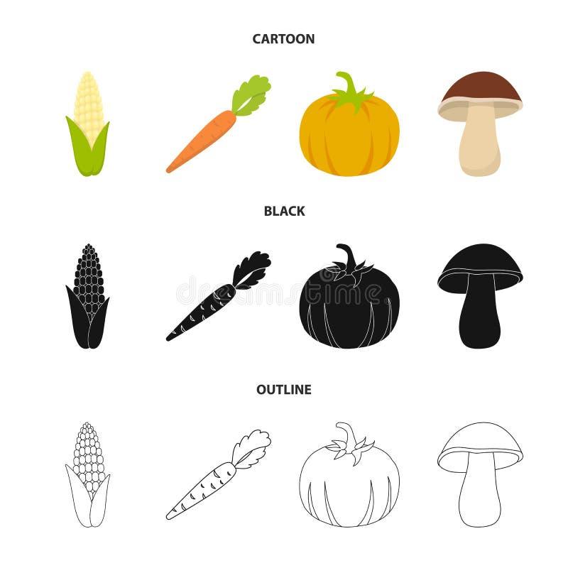 Kukurydzana kukurudza, witamin marchewki z wierzchołkami, bania, las pieczarka Warzywo ustawiać inkasowe ikony w kreskówce, czerń ilustracji