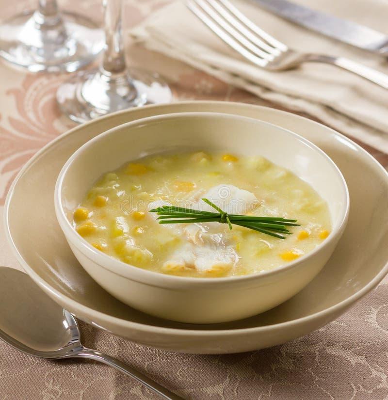 Kukurydzana rybia gęsta zupa rybna zdjęcie royalty free