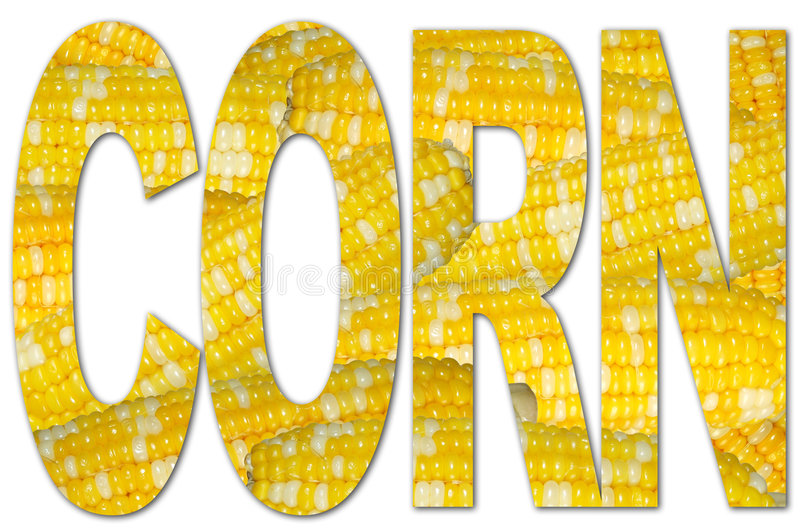 kukurydzana tekstury typografia ilustracji