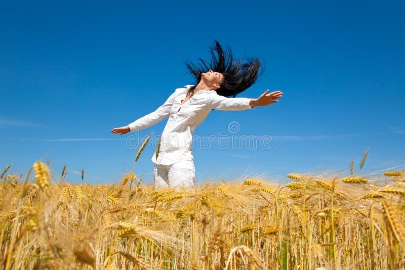 kukurydzanego pola doskakiwanie obraz stock