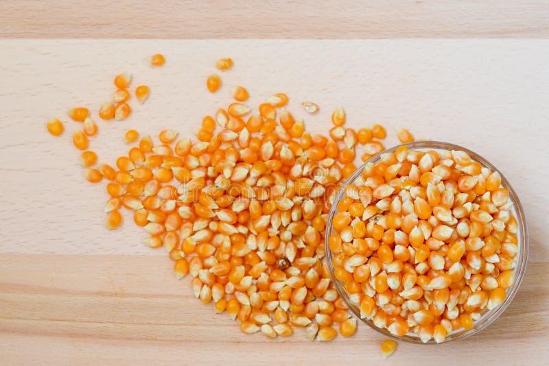 Kukurydzani nasiona zdjęcie royalty free