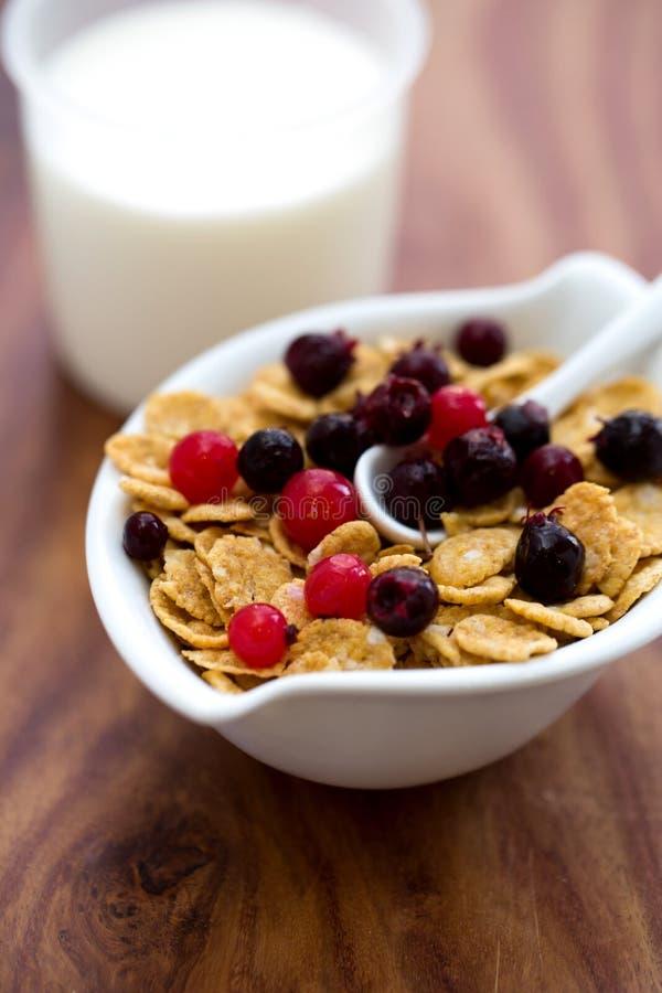 Kukurydzani płatki z jagodami i mlekiem obrazy royalty free