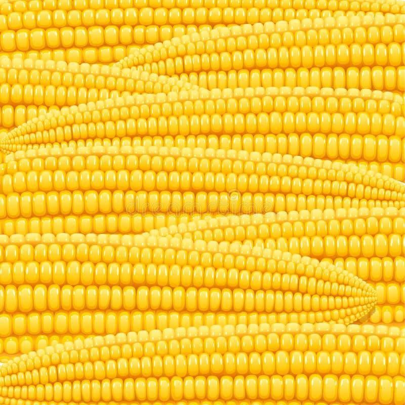 Kukurydzany cob Żywność organiczna wzór royalty ilustracja