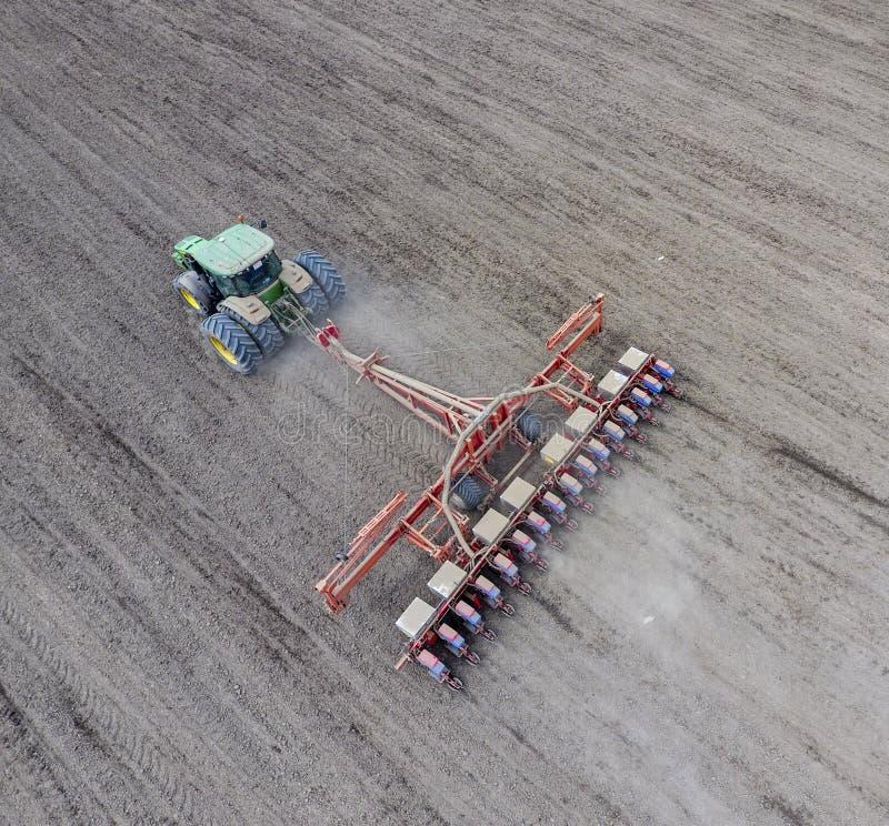 Kukurydzany ikrzak Siać na polu z ikrzakiem kukurudza obrazy royalty free