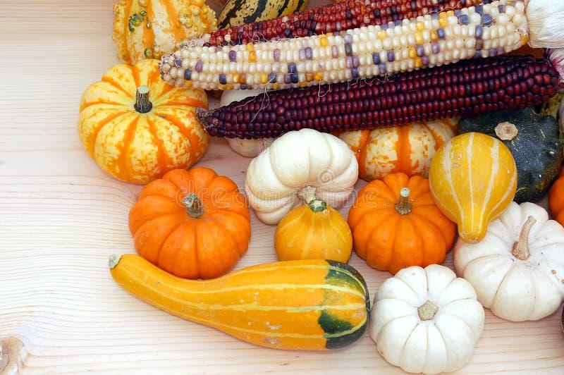 kukurydzany Indiana zdjęcie royalty free