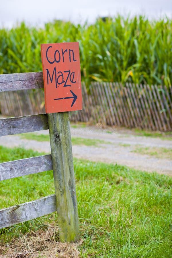 Kukurydzany Labirynt fotografia stock