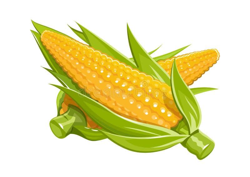Kukurydzany wektorowy ilustraci eps10 bielu tło royalty ilustracja