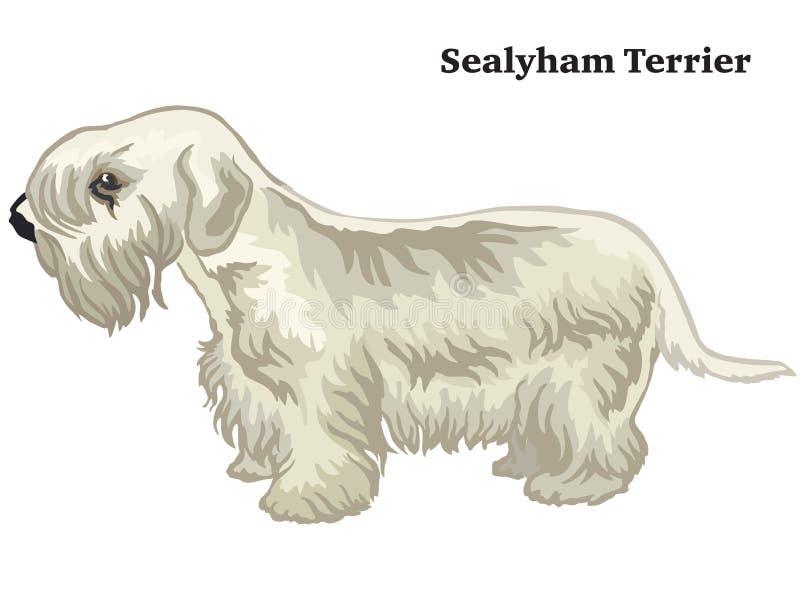 Kulör dekorativ stående stående av den Sealyham Terrier vektorillustrationen royaltyfri illustrationer
