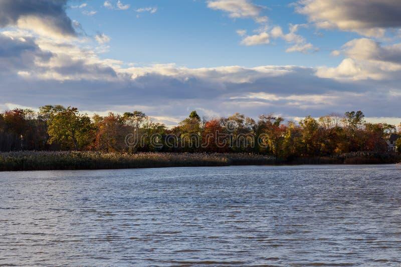 Kulör vattensikt för höst av den pittoreska naturen för solnedgång med floden och gulnade träd i Landskap Mjukt filter royaltyfri bild