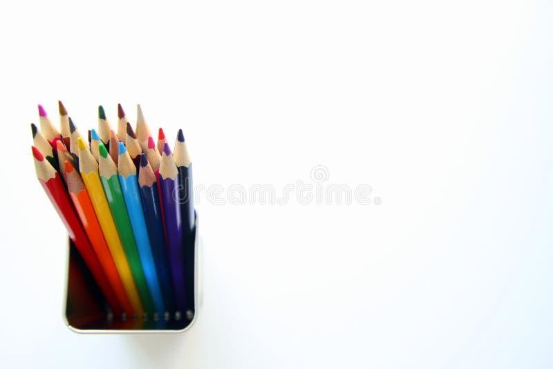 Kulöra blyertspennor inom en tenn- can på den vita bakgrunden royaltyfri foto