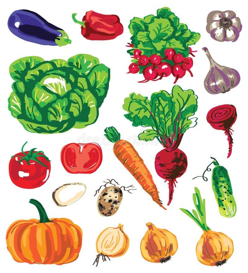 Kulöra grönsaker på vit bakgrund stock illustrationer