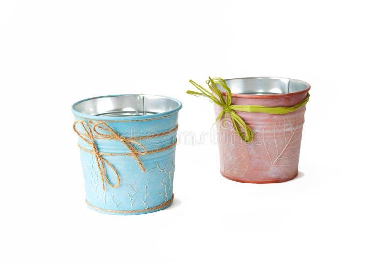 Kulöra hinkväxter inhyser, isolerar, blått, och rosa färger färgar royaltyfri bild