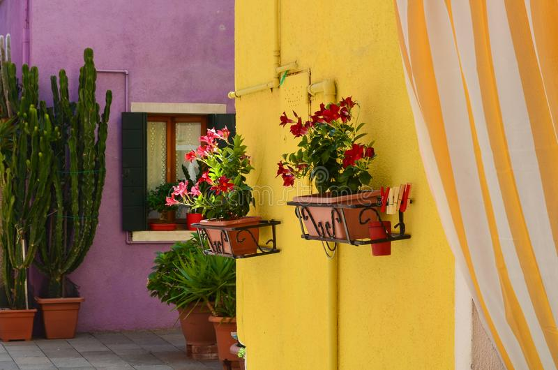 Kulöra hus i Venedig Italien arkivfoton