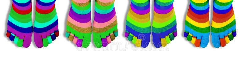 Kulöra sockor med fingrar som isoleras på vit panorama arkivbild
