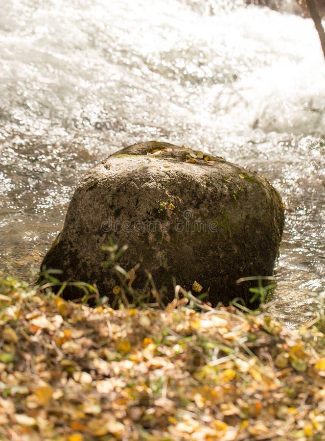 Kulöra stenar under vatten som bakgrund royaltyfri fotografi