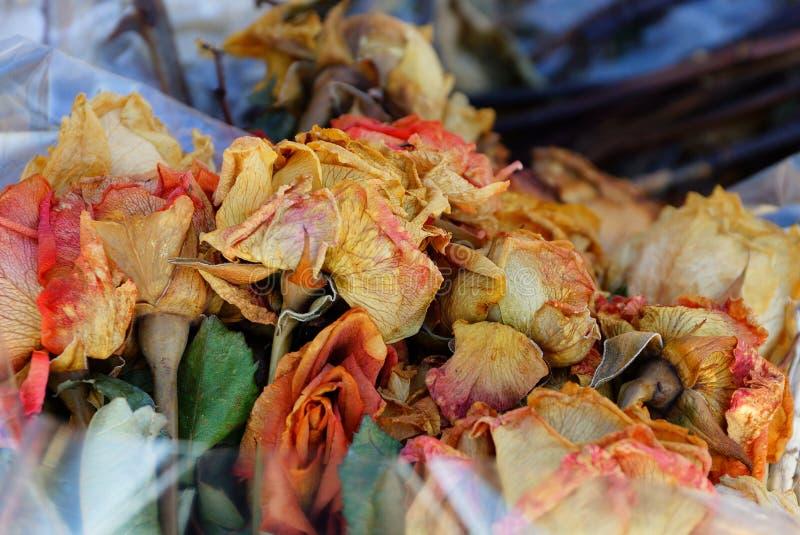 Kulöra torra vissnade blommarosor i en bukett i cellofan i en hög av avskräde arkivbilder
