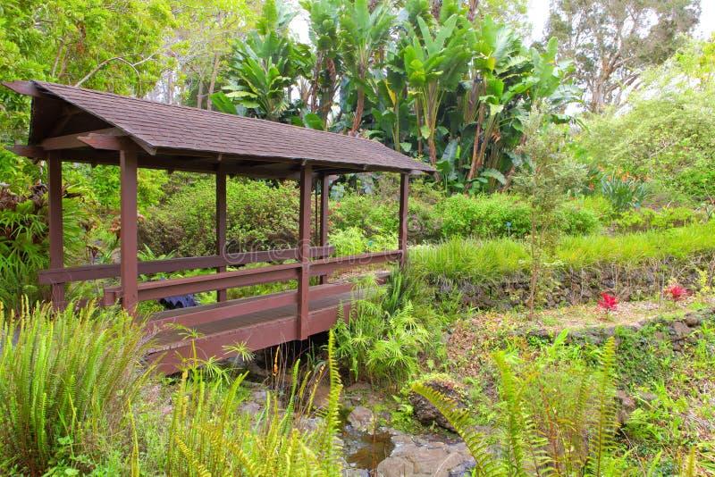Kula植物园。 毛伊。 夏威夷。 被遮盖的桥。 热带风景。 免版税库存照片