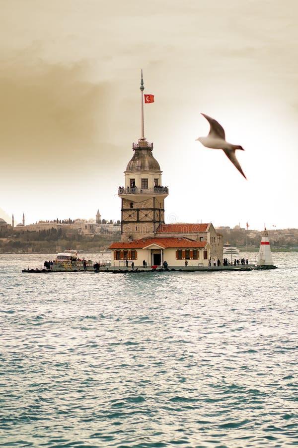 Kulesi y gaviota virginales Estambul del kiz de la torre del ` s imagen de archivo