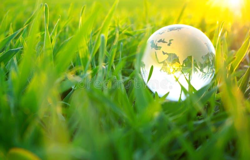 kuli ziemskiej trawa zdjęcia stock