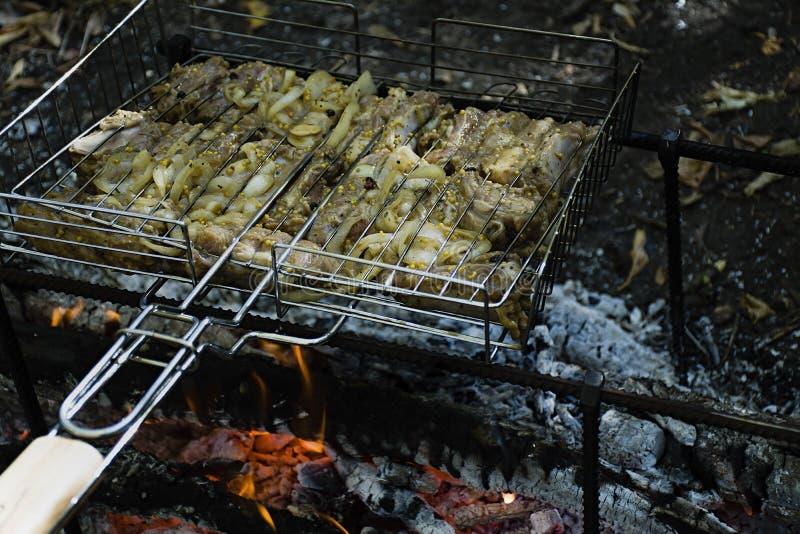 Kulinarni wieprzowina ziobro na ogieniu Shish kebab na grillu, grill z płomieniem w naturze Boczny widok obraz royalty free
