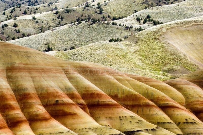kullar målade oregon arkivbild