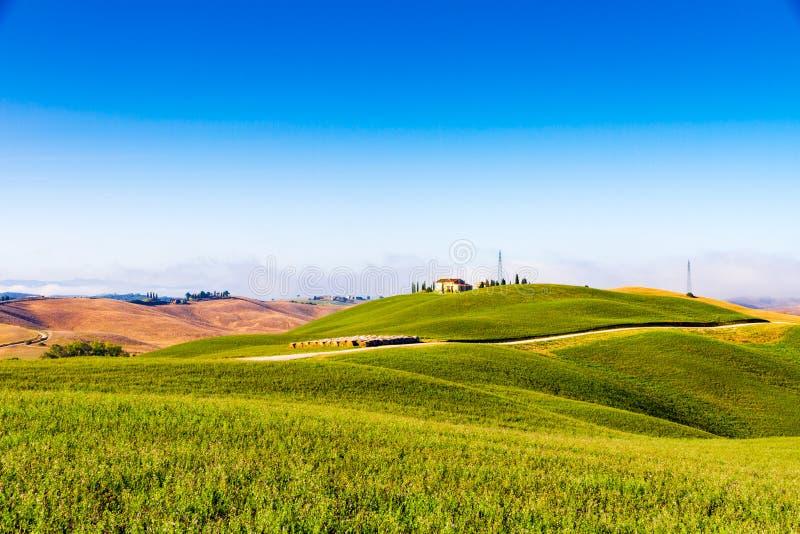 Kullar och fält i sommar i Tuscany, Italien royaltyfri bild