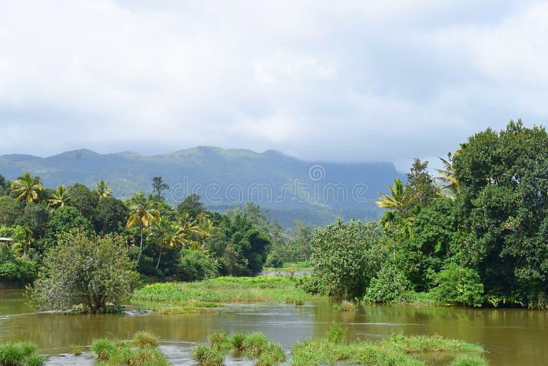 Kullar, vatten och grönska - landskap i Idukki, Kerala, Indien royaltyfria bilder