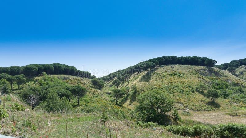 Kulle av Montebello calabria italia arkivbild