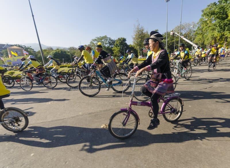 Kullestamdam på cykeln för farsa arkivbild