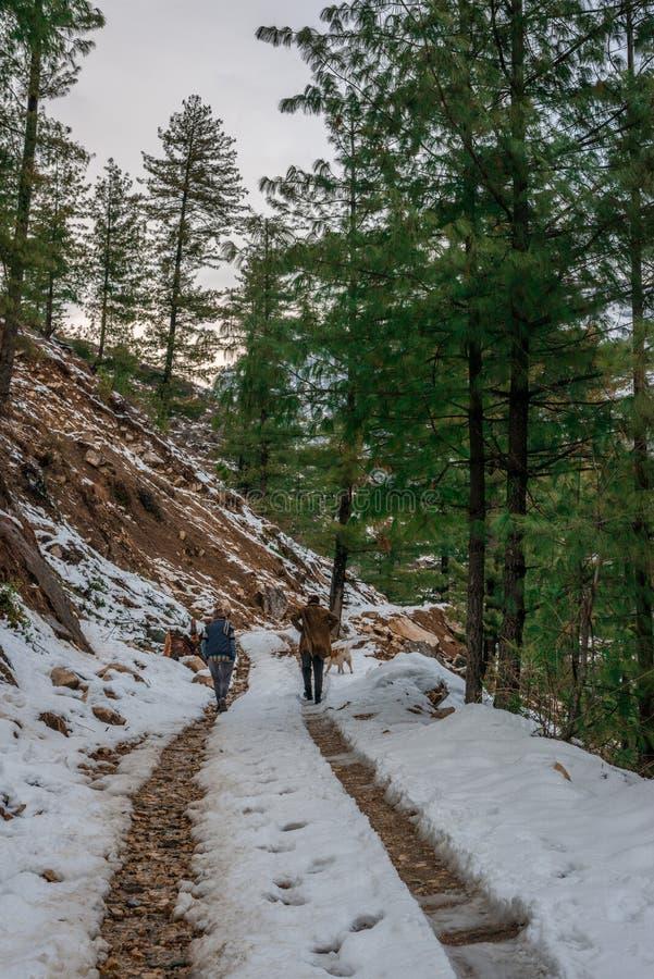 Kullu, Himachal Pradesh, India - Feburuary 08, 2019: Reiziger in Bergen - Majestueus de winterlandschap in Himalayagebergte stock foto