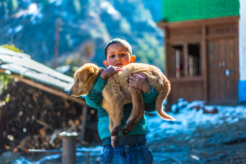 Kullu, Himachal Pradesh, India - January 26, 2019 : Happy boy playing with dog in mountains. Family love child person summer kid nature animal puppy pet lawn stock photos