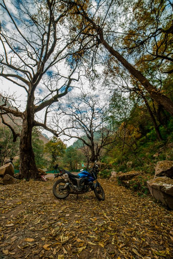 Kullu, Himachal Pradesh, India - November 26, 2018 : Ride in Autumn - Beautiful landscape with rural road, trees with red and. Orange leaves in himalays royalty free stock photo