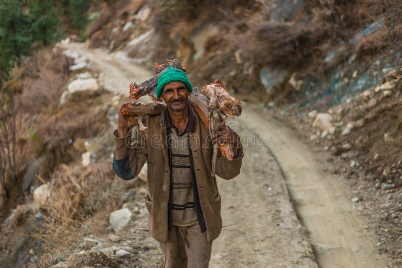 Kullu Himachal Pradesh, Indien - Februari 01, 2019: B?rande tr? f?r oidentifierad himachaligamal manman i Himalayas Indien arkivfoton