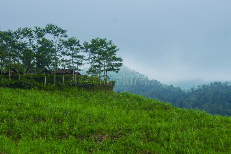 Kulon Progo. Nature in Kulon Progo, Middle Java, Indonesia, South East Asia, Asia, Earth royalty free stock photography