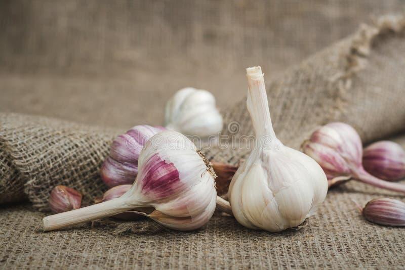 Kulor och kryddnejlikor av naturlig organisk vitlök på en matt linne royaltyfria foton