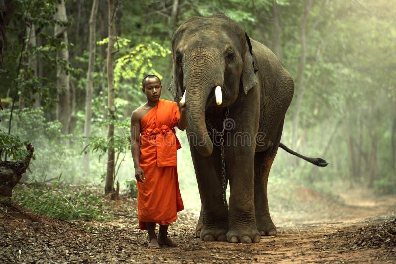 Kultur des buddhistischen Mönchs von Kui-Leuten am surin Thailand lizenzfreie stockfotografie