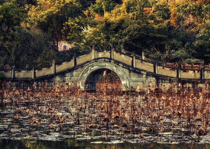 Kultur parkerar, Chengdu, Kina arkivfoton