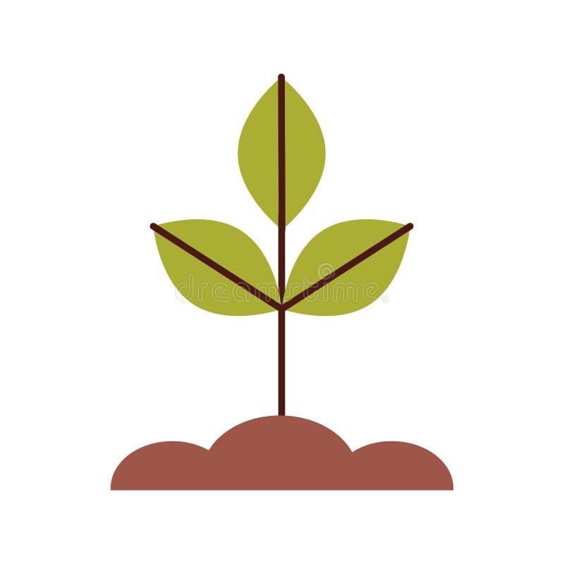 Kultywująca rośliny odosobniona ikona royalty ilustracja