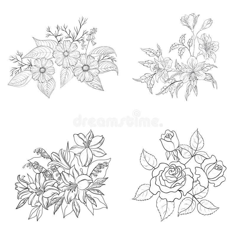 Kultywujący kwiaty, kontur, set royalty ilustracja