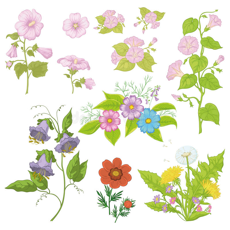 Kultywujący kwiaty, set ilustracji