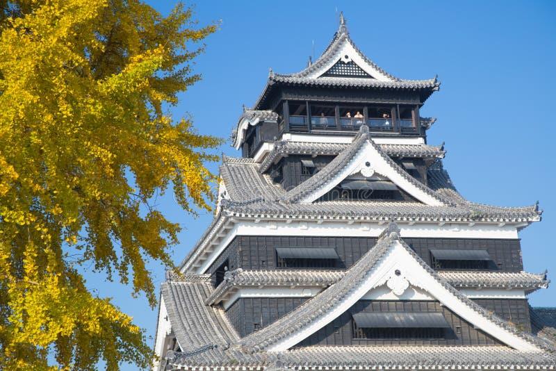 Kumamoto kasztel w jesieni z pięknym ginkgo kolorem żółtym opuszcza i b obraz royalty free