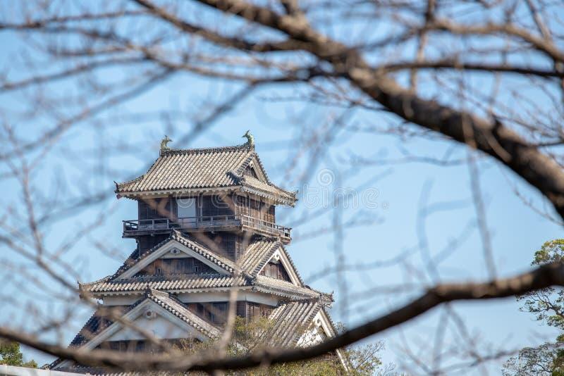 Kumamoto kasztel w Kyushu Japonia, spojrzenie przez suchego czereśniowego blo zdjęcie stock