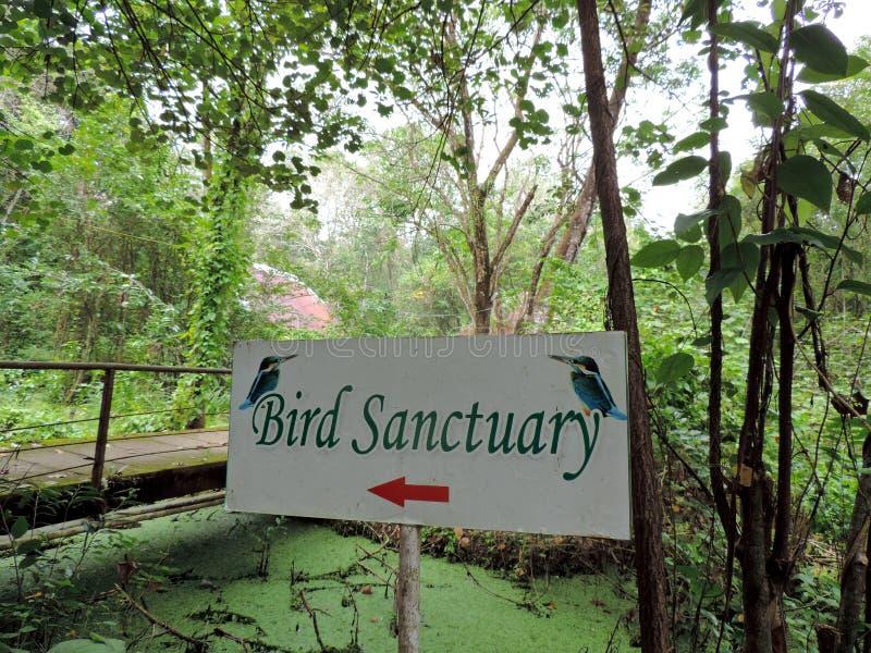 Kumarakom fågelfristad i Kerala, Indien royaltyfri fotografi