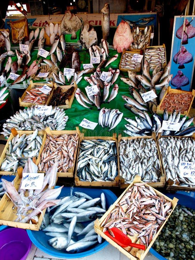 Free Kumkapi Fish Market 5 Stock Image - 31015341