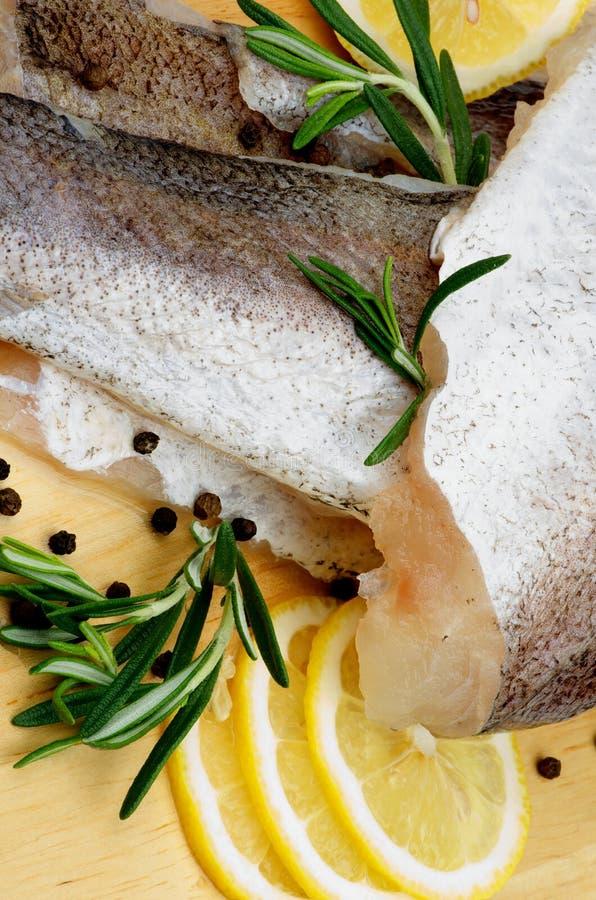 Kummel för rå fisk royaltyfri fotografi