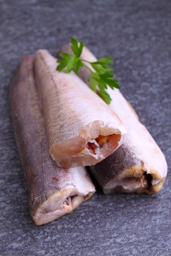 Kummel för rå fisk royaltyfria foton