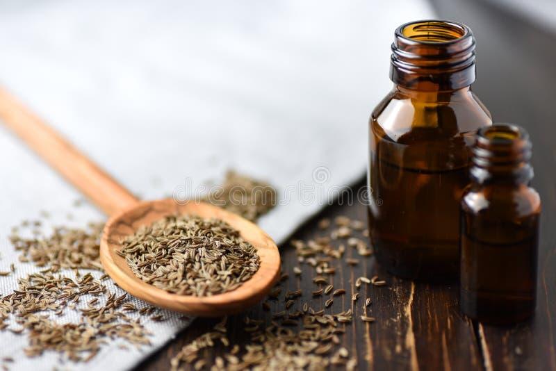 Kumminolja och frö på träskeden och nödvändig olja royaltyfri foto